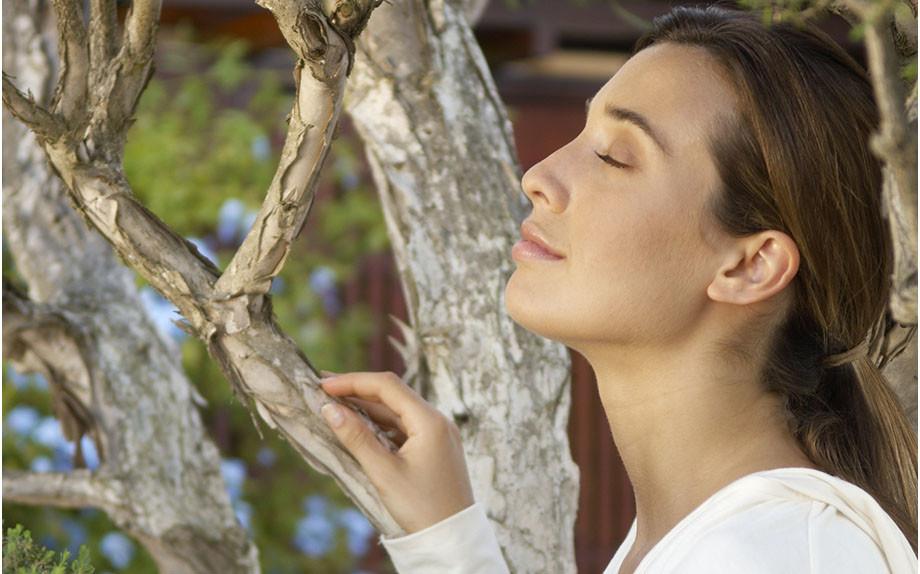 Sviluppa il tuo olfatto